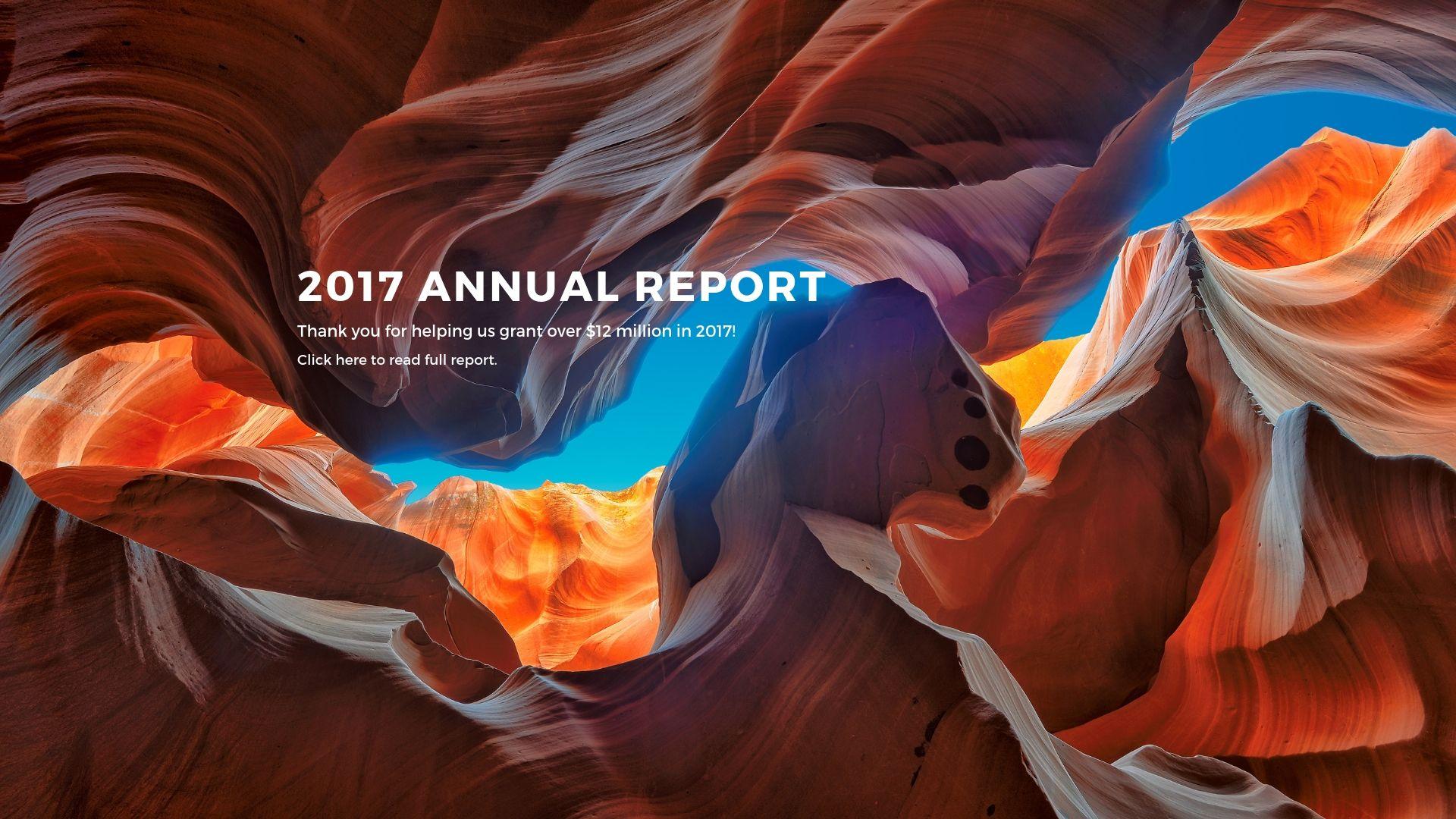2017_Annual_Report_4